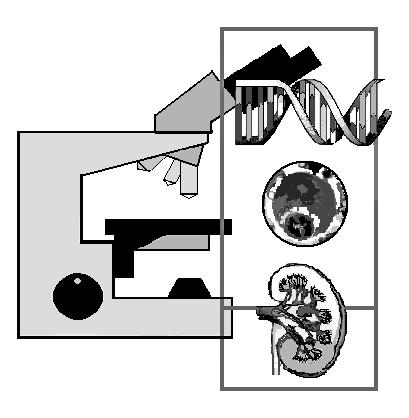 Pathologie Rostock Logo